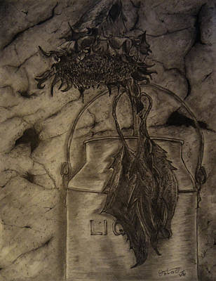 Still Life Drawings - Still Life One Dried Sunflower in Metal Jug by Jose A Gonzalez Jr