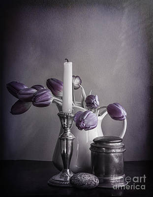 Still Life Study In Purple Art Print by Terry Rowe