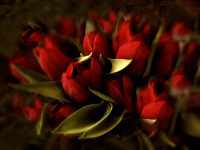 Photograph - Still Life Tulips by Jessica Jenney