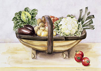 Cauliflower Drawing - Still Life With A Trug Of Vegetables by Alison Cooper