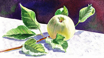 Apple Watercolor Painting - Still Life With Apple by Irina Sztukowski