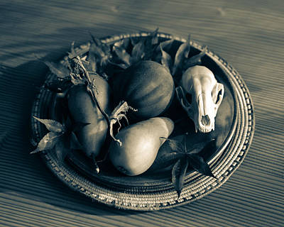 Photograph - Still Life With Coyote Skull Pears Squash 3 by Ronda Broatch