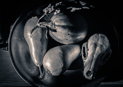 Photograph - Still Life With Coyote Skull Pears Squash In Black And White by Ronda Broatch