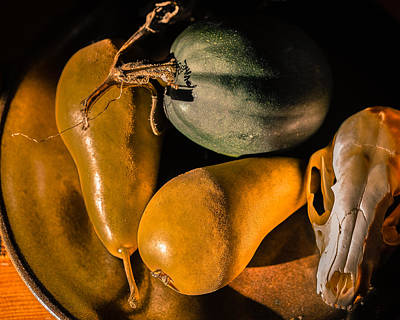 Photograph - Still Life With Coyote Skull Pears Squash by Ronda Broatch
