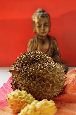 Still Life With Durian And Pitahayas Art Print
