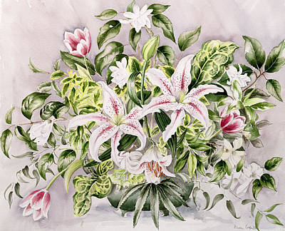 Botanical Drawing - Still Life With Lilies by Alison Cooper