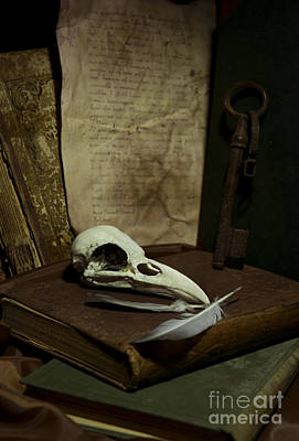 Still Life With Old Books Rusty Key Bird Skull And Feathers Art Print by Jaroslaw Blaminsky