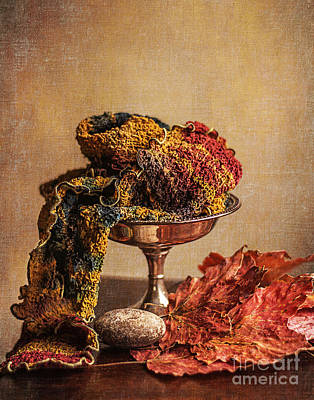 Photograph - Still Life With Scarf by Terry Rowe