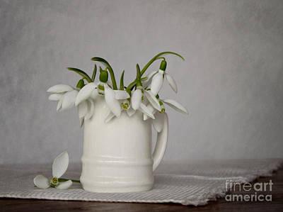 Still Life With Snowdrops Art Print by Diana Kraleva