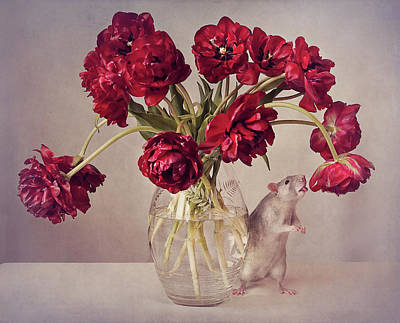 Rodent Wall Art - Photograph - Still Life With Tulips :) (expensive Vase.....uploaded For The Weekly Theme expensive by Ellen Van Deelen