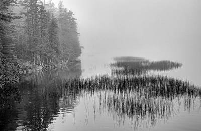 Photograph - Still Pond by William Wetmore