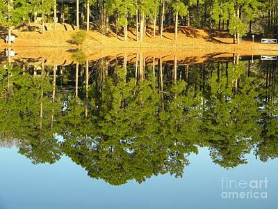 Still Reflections Art Print