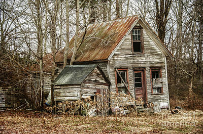 Photograph - Still Standing by Terry Rowe