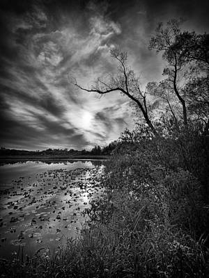 Photograph - Still Water by Dennis James