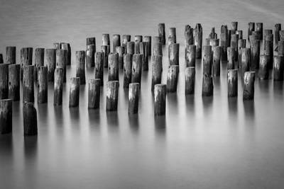Oceanside Photograph - Still Waters Bw by Susan Candelario