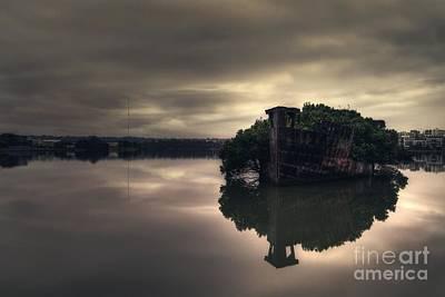 Carcass Photograph - Stillness Speaks by Andrew Paranavitana