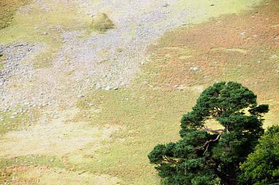 Photograph - Stillness. Wicklow Mountains. Ireland by Jenny Rainbow