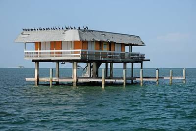 Photograph - Stilt House With Cormorants by Bradford Martin