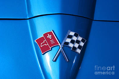 Photograph - Sting Ray Crossed Flags by Paul Mashburn
