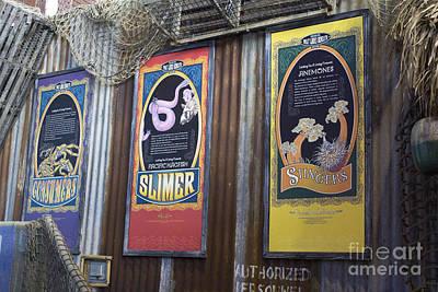Photograph - Stinger Slimer Consumer by Steven Parker