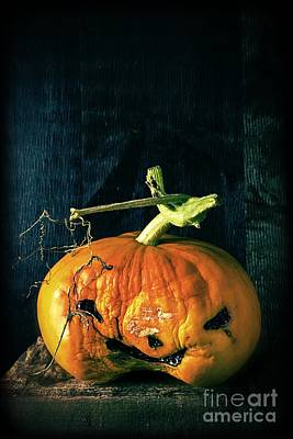 Photograph - Stingy Jack - Scary Halloween Pumpkin by Edward Fielding