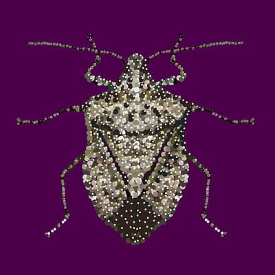 Digital Art - Stink Bug Bedazzled by R  Allen Swezey