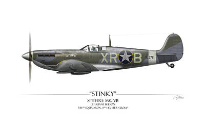 Mkix Painting - Stinky Duane Beeson Spitfire - White Background by Craig Tinder