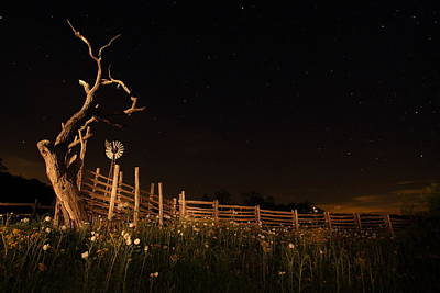 Flower Photograph - Stockyards 2am-110286 by Andrew McInnes