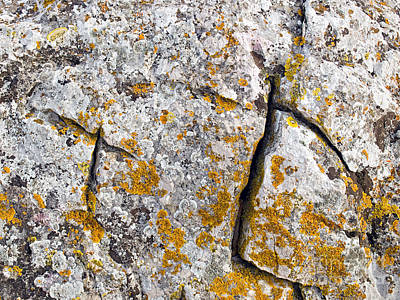 Photograph - Stone Background by Sinisa Botas