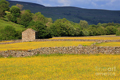Stone Barn Photograph - Stone Barn And Dry Stone Walls In Swaledale In The Yorkshire Dales by Louise Heusinkveld