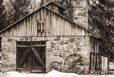 Stone Cabin 2 Art Print by Judy Wolinsky