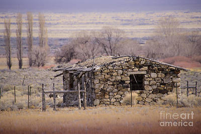 Stone Cabin In The Big Smoky Valley Art Print by Janis Knight