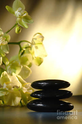 Spa Photograph - Stone Cairn And Orchids by Olivier Le Queinec