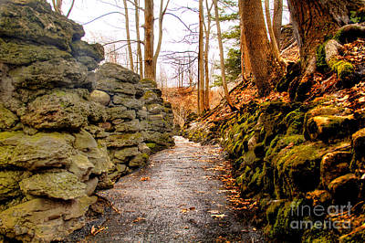 Stone Cold Walkway Art Print by Jim Lepard
