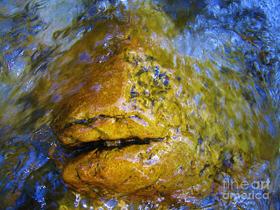 Stone Fish Art Print by Janice Westerberg