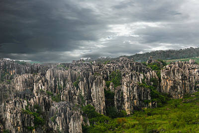 Photograph - Stone Forest by Robert Hebert