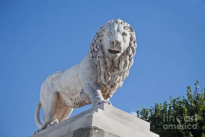 Photograph - Stone Lion by Liz Leyden