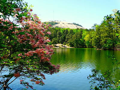 Photograph - Stone Mountain Georgia by Alan Lakin