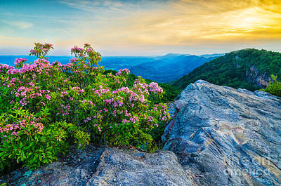 Cliff Lee Photograph - stone mountain KY by Anthony Heflin
