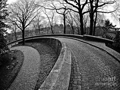 Photograph - Stone Road And Path by Mark Miller