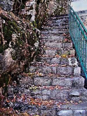 Fallen Leaf Digital Art - Stone Stairway by Jane Schnetlage