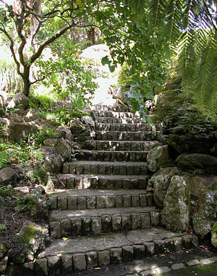 Photograph - Stone Steps by Aileen Mayer