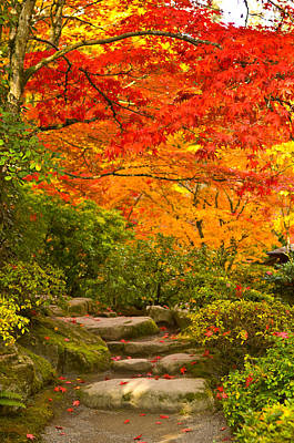 Stone Steps In A Forest In Autumn Art Print by Panoramic Images