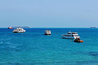 Photograph - Stone Town Harbour by Tony Murtagh