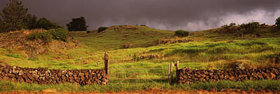 Stone Wall In A Field, Kula, Maui Art Print by Panoramic Images