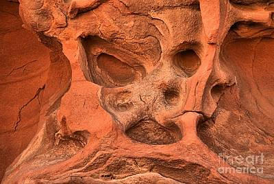 Photograph - Stoned At The Valley Of Fire by Adam Jewell