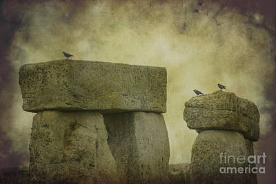 Photograph - Stonehenge Birds 5 by Clare Bambers
