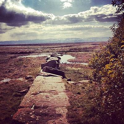 Marsh Photograph - Stones Into The Marsh by Ash Williams