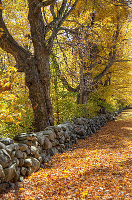 Stonewall In Autumn Art Print by Donna Doherty