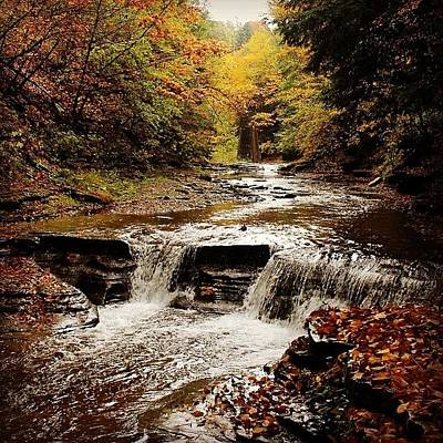 Stony Brook Gorge Art Print by Justin Connor